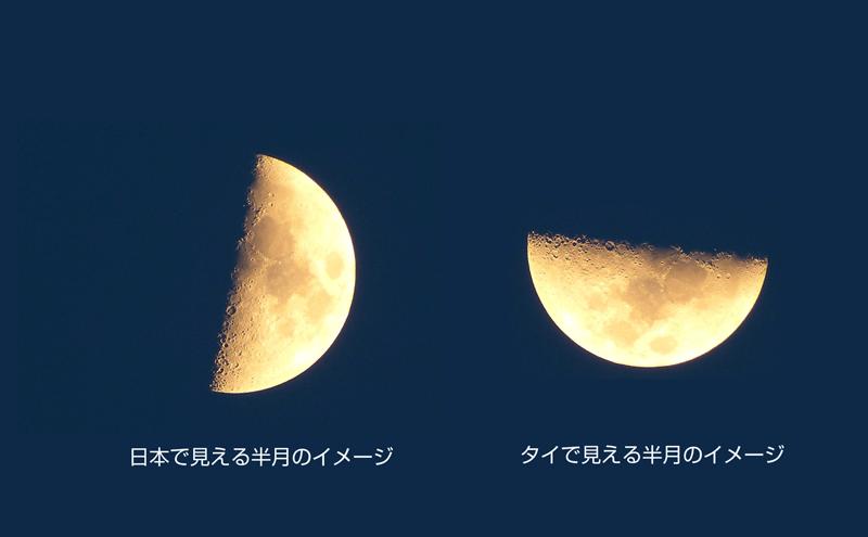 タイの半月