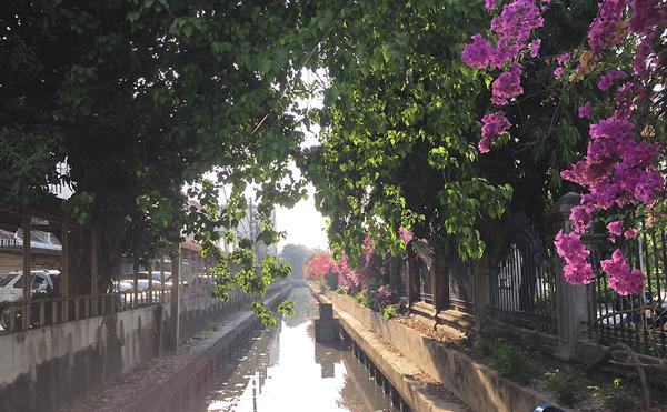 バンコクのロッマニーナート公園