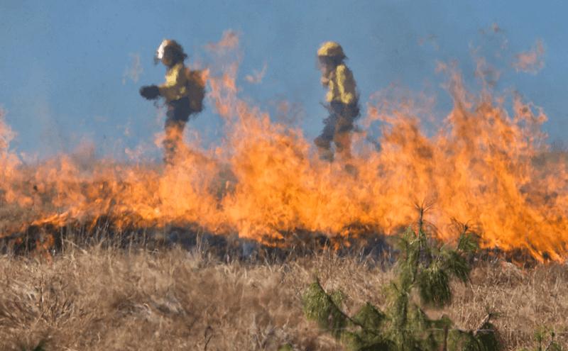 山火事の消火