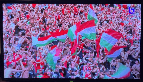 EURO2020ハンガリー